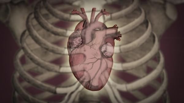 Vidéo Heartbeat